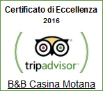 Read Reviews for TripAdvisor